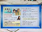 毎日放送「ちちんぷいぷい」 2018年5月14日放送のサムネイル